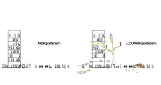 Ecometropolism