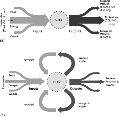Biocénose urbaine2